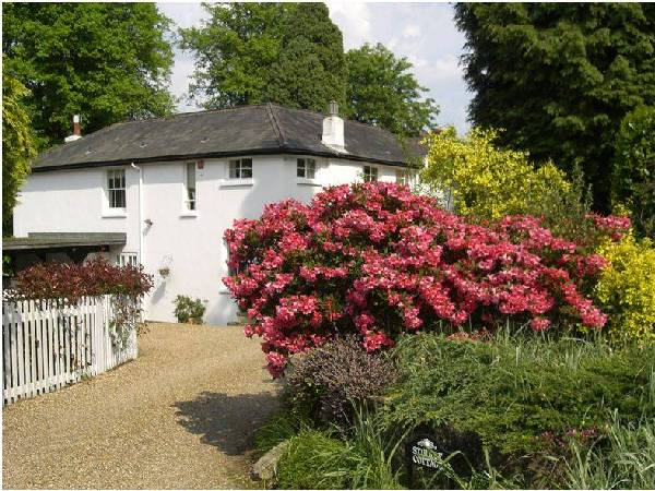 Studley Cottage Bed & Breakfast Bed and Breakfast's Photo 1